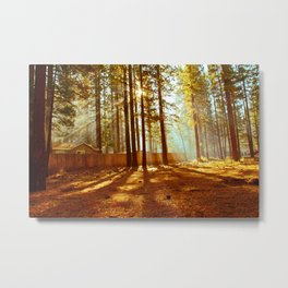 LOST IN TAHOE Metal Print