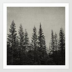 the edge of the forest Art Print