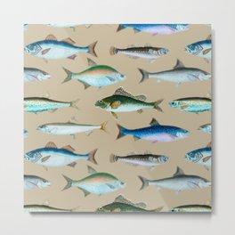 School of Fish No. 4 Metal Print