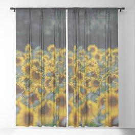Summer orange yellow green black sunflowers Sheer Curtain