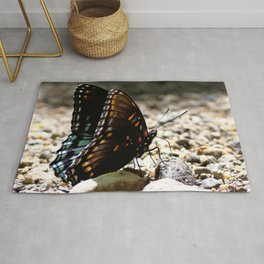 Watercolor Butterfly, White Admiral Butterfly 03, Cucumber Falls, Pennsylvania Rug