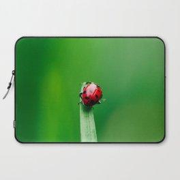 Balancing Acts Laptop Sleeve
