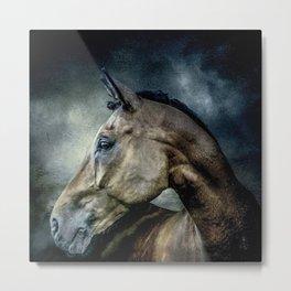 Stallion Metal Print
