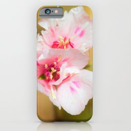 A Little Bit of Pink by Reay of Light Photography iPhone Case