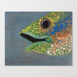 Fish 5: Slurp Canvas Print