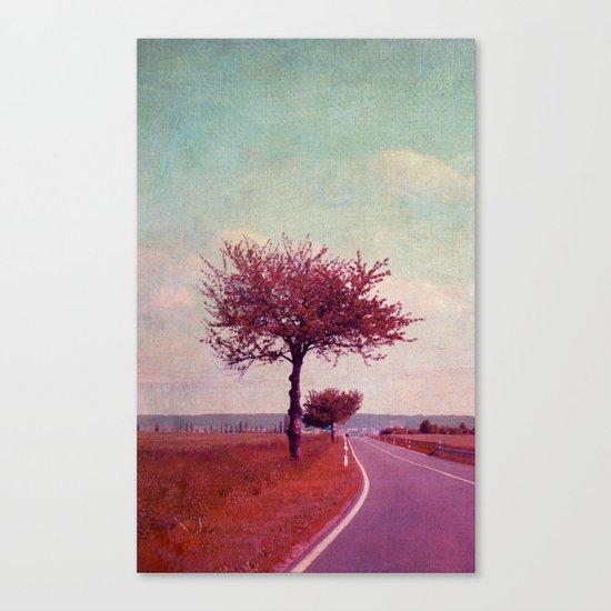 summer & sun Canvas Print