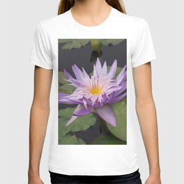 Rosy lavender water lily T-shirt