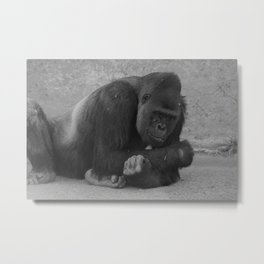 What's Up Girl Metal Print
