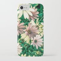daisies iPhone & iPod Cases featuring Daisies by Loredana