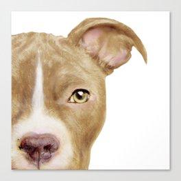 Pitbull light brown Dog illustration original painting print Canvas Print