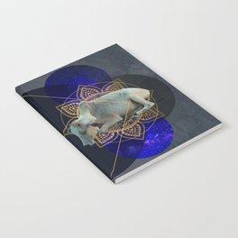 Inde Cosmologique I Notebook