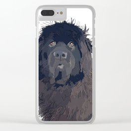 Bitch Please.  I'm Fabulous.  Newfie Clear iPhone Case