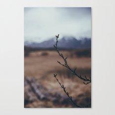 wandering iceland Canvas Print