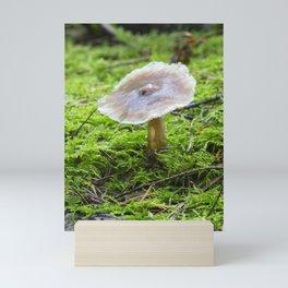 Fungi and moss Mini Art Print