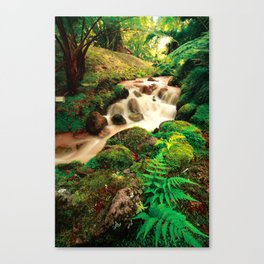 Parque Terra Nostra, Azores Canvas Print