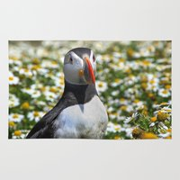 puffin Area & Throw Rugs featuring Atlantic Puffin by Julie Hoddinott