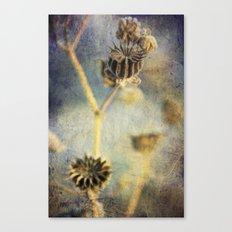November 2 Canvas Print