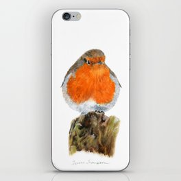 English Robin by Teresa Thompson iPhone Skin