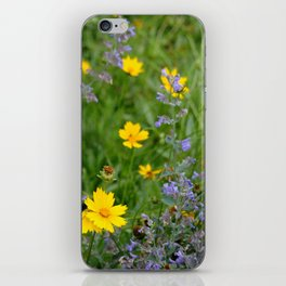 Wildflowers , Coreopsis and Tickseed iPhone Skin