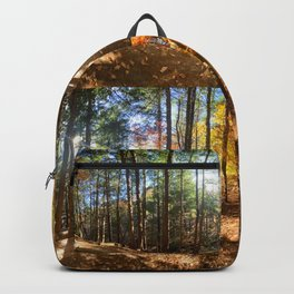Vaughan Woods Foliage (2) Backpack