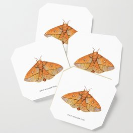 Spiny Oakworm Moth (Anisota stigma) Coaster