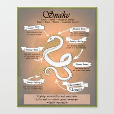 Snake Science Canvas Print