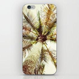 Perfect Palm Tree iPhone Skin
