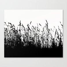 grass bw Canvas Print