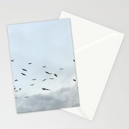 Pelicans Stationery Cards