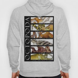 Octopus of the World Hoody