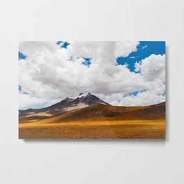 Summer in the Altiplano Metal Print