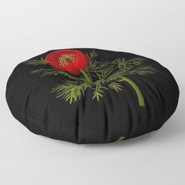 Paeonia Tenuifolia Mary Delany Vintage British Floral Flower Paper Collage Black Background Floor Pillow