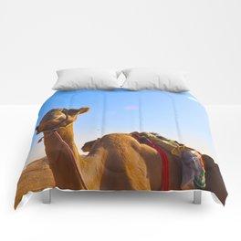 Camel Face Comforters