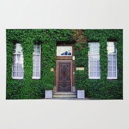 The door_17 Rug