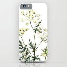 watercolor dill Slim Case iPhone 6s