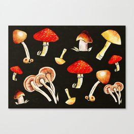 Brigt Mushrooms Canvas Print