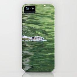 Beaver on an Evening Swim iPhone Case