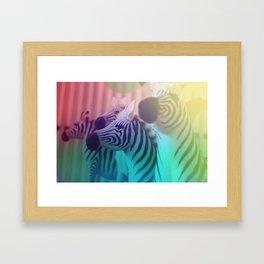 Zebra Spectrum Framed Art Print