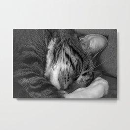 Tiger in my bed Metal Print