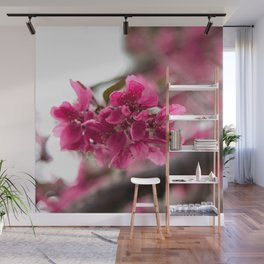 Droplets on Dark Pink Crabapple Blossoms Wall Mural