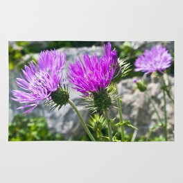 SICILIAN PURPLE THISTLE Rug