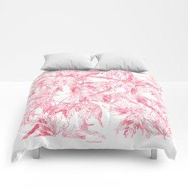 Acer palmatum Comforters