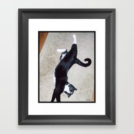 Big Stretch (More Kitty) Framed Art Print