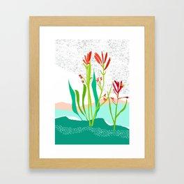 Kangaroo Paw Botanical Illustration Framed Art Print