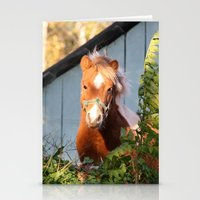 pony Stationery Cards featuring Pony by Linda Fields