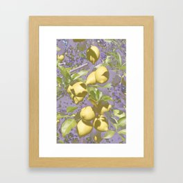 purple lemons Framed Art Print