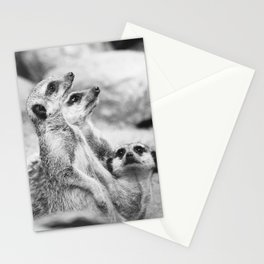 Black and White Meerkats Stationery Cards