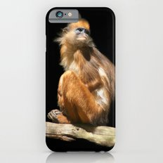 Banded Leaf Monkey Howletts iPhone 6s Slim Case