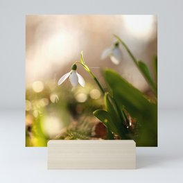 You And I Two Snowdrop Flowers #decor #society6 Mini Art Print