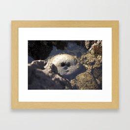 Smiling Rock Framed Art Print